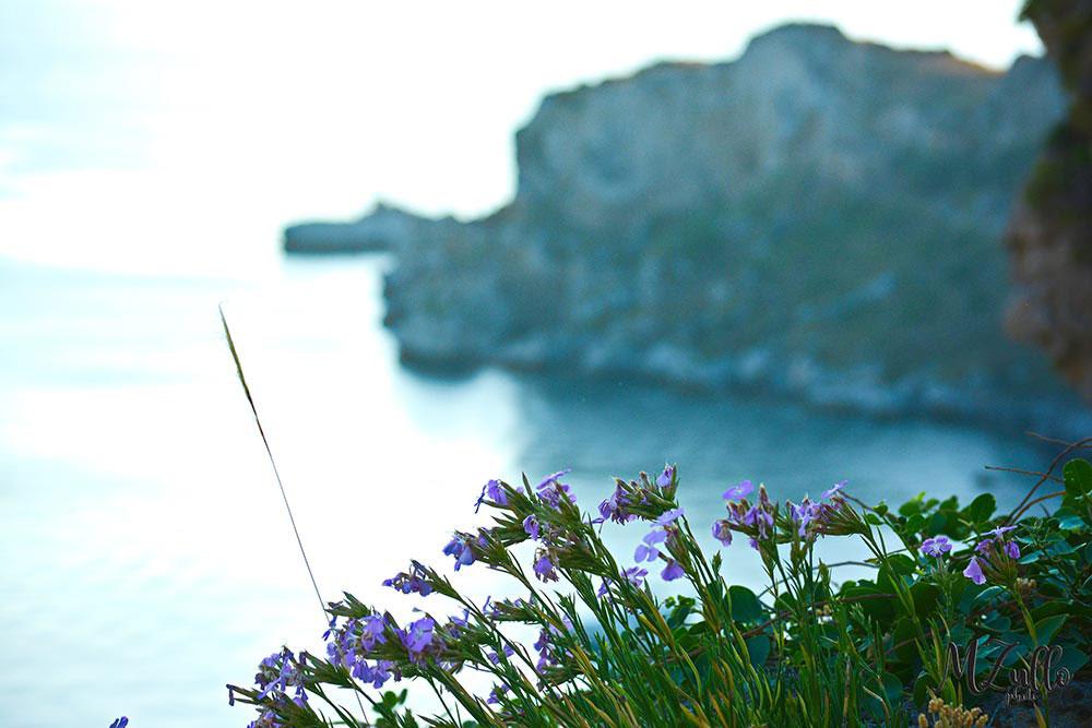 Rakelhome - Vista del mare e di Capo Milazzo
